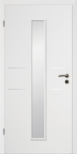 Designtürelement Weißlack CPL mit Edelstahllisene 2 LA 4