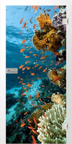 Ganzglastür Unterwasser fotoprint/fusion